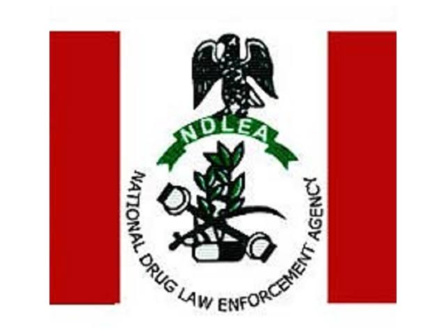 NDLEA Recruitment 2021 - How to Apply to the National Drug Law Enforcement Agency